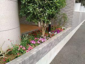 賃貸物件 維持メンテ 植栽 花壇 装飾 花