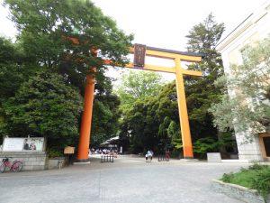 氷川神社 大鳥居 プリエハツカリ 周辺