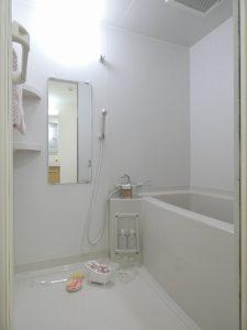 ルネス 新富町スクエア 浴室